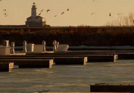 Chicago's Music Scene Documented in New Film with Steve Albini, Gastr del Sol
