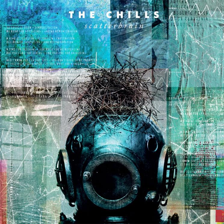 The Chills Unveil New Album 'Scatterbrain'