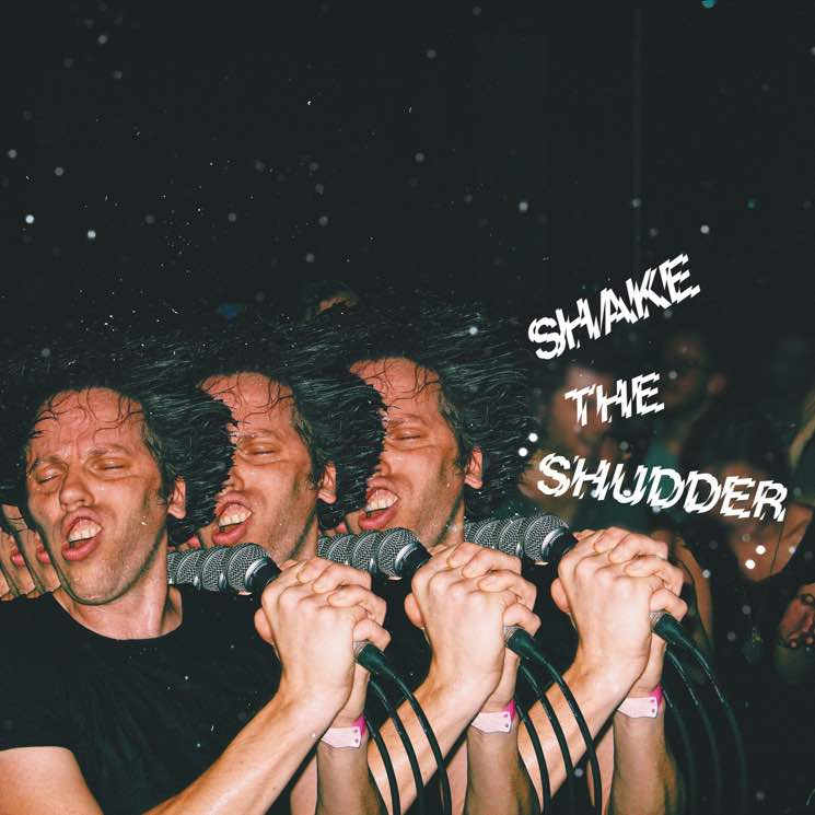 "​!!! Announce 'Shake the Shudder' Album, Share ""The One 2"" Video"