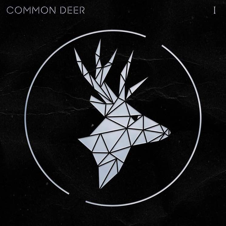 Common Deer I