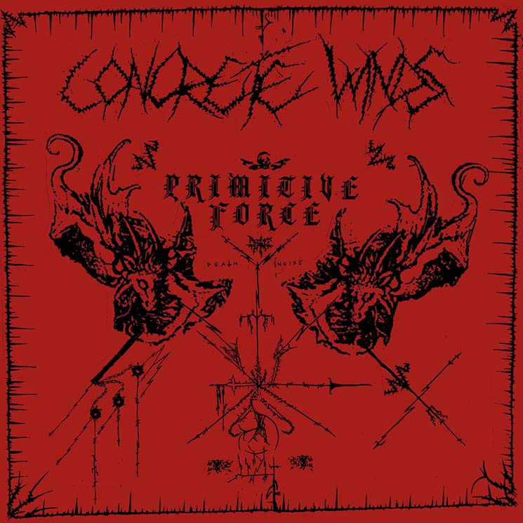 Concrete Winds Primitive Force