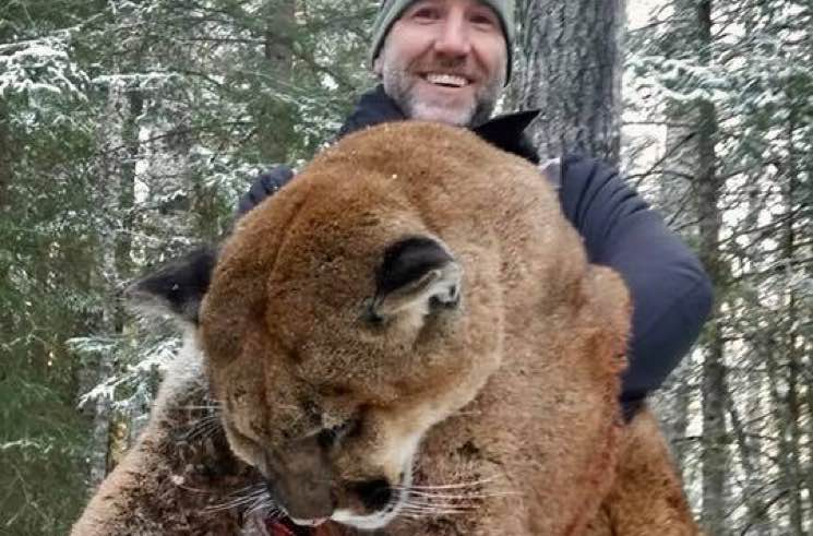 ​Canadian TV Host Under Fire for Photos of Cougar Hunt in Alberta