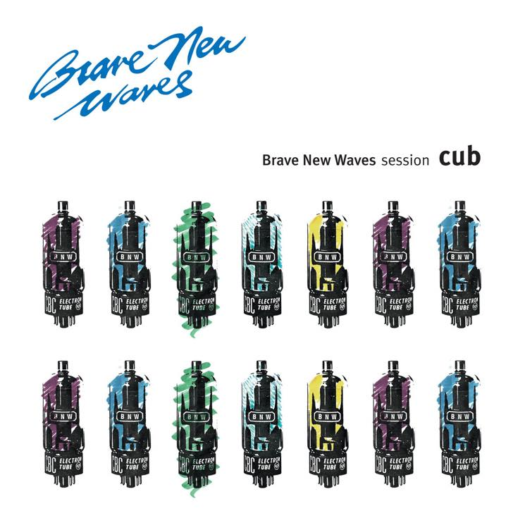 ​Stream Cub's 1993 'Brave New Waves' Session