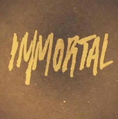"Kid Cudi ""Immortal"""