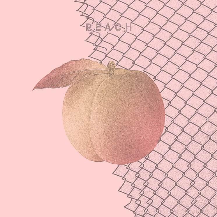 Culture Abuse Peach