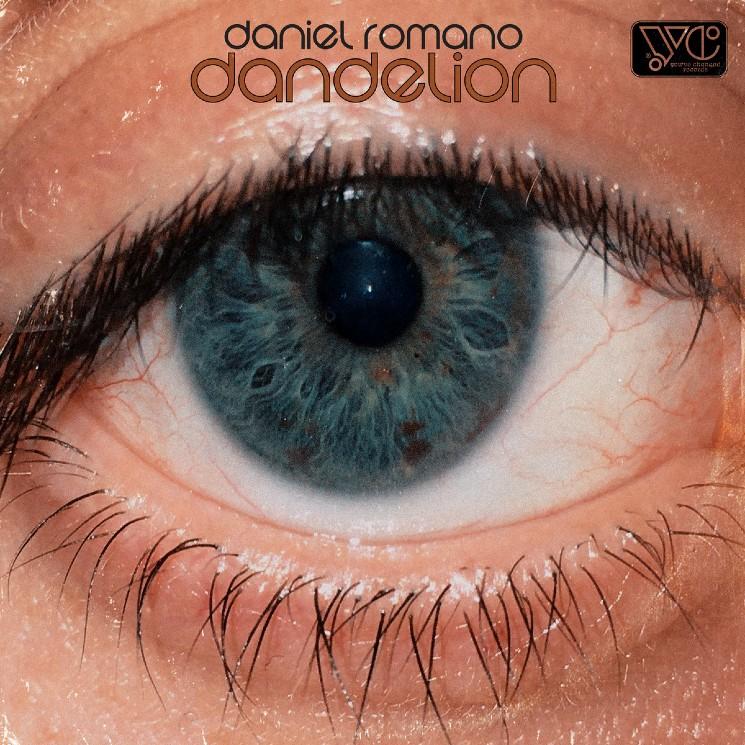 Here's Daniel Romano's Seventh Album of 2020 'Dandelion'