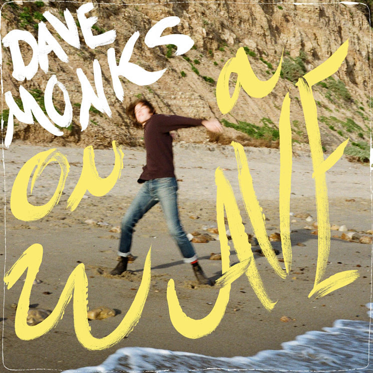 Tokyo Police Club's Dave Monks Announces Solo Album 'On a Wave'