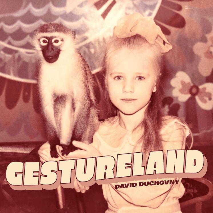 David Duchovny Announces New Album 'Gestureland'