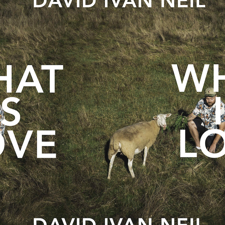 David Ivan Neil Asks 'What Is Love?' on Debut LP, Premieres New Music Video