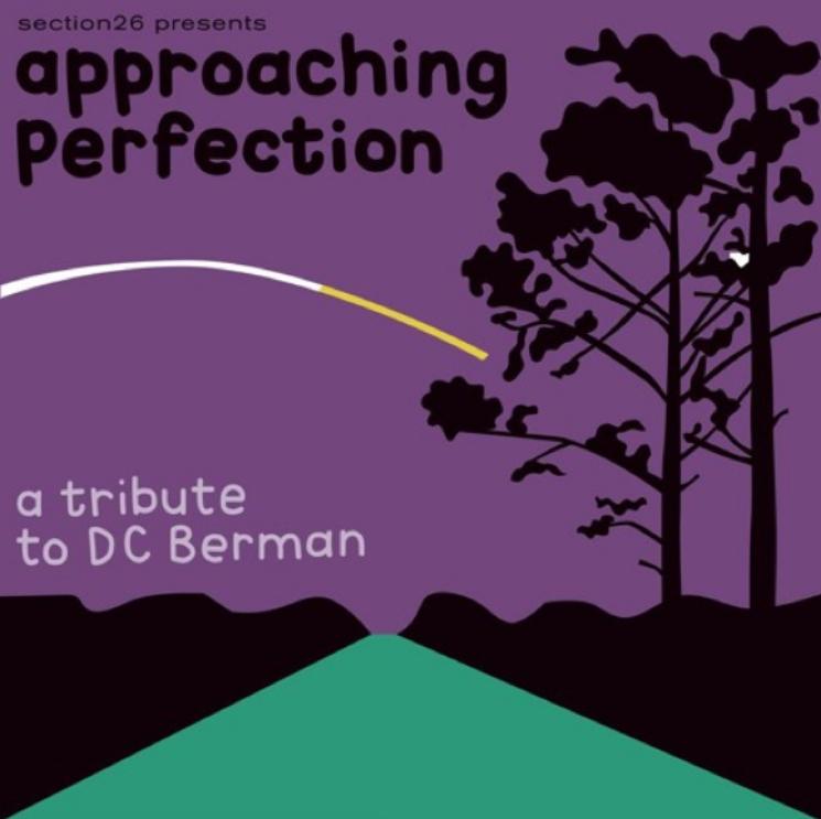 David Berman Celebrated with Massive Tribute Album
