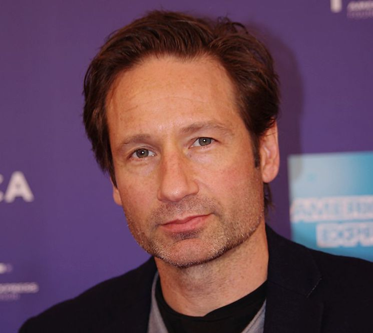 David Duchovny Is Starring in a TV Adaptation of His Own Novel
