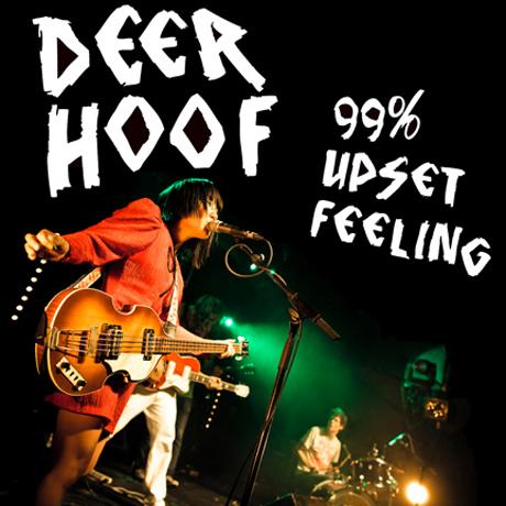 Deerhoof Share Free Live Album