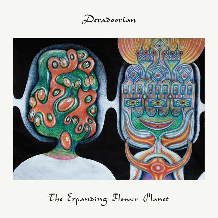 "Deradoorian Announces Debut Solo LP, Shares ""A Beautiful Woman"""