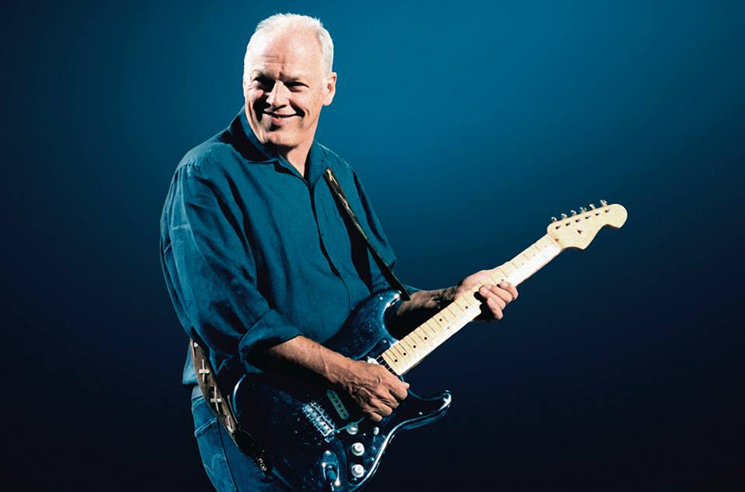 David Gilmour to Auction 120 Guitars for Charity