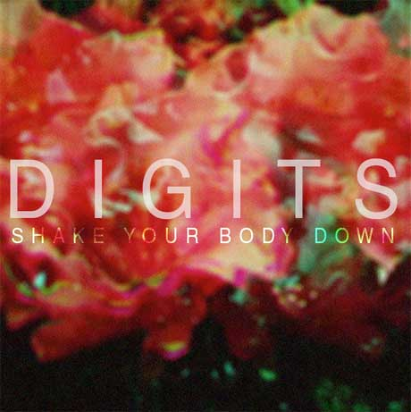Digits 'Shake Your Body Down' (mixtape)