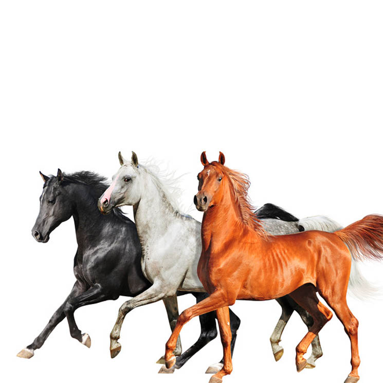​Hear Diplo's Remix of Lil Nas X and Billy Ray Cyrus' 'Old Town Road'
