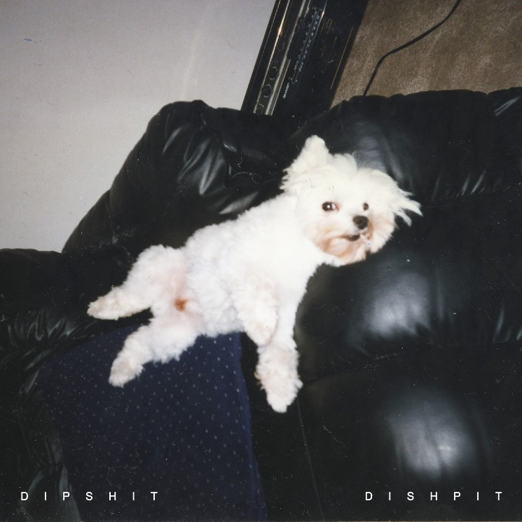 Montreal's DISHPIT Unleash Post-Punk Devastation on 'DIPSHIT'