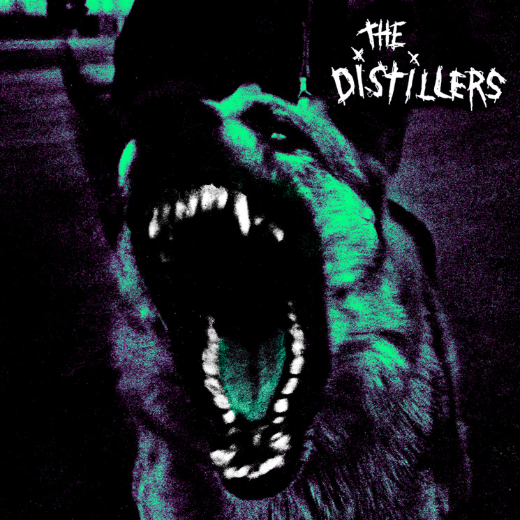 The Distillers Treat Self-Titled Debut Album to Anniversary Reissue