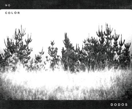 The Dodos Announce <i>No Color</i> LP Details, Get Neko Case to Guest