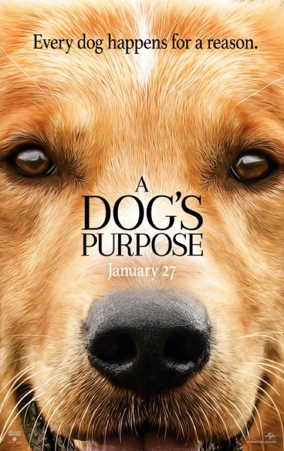 "American Humane Society Claims 'A Dog's Purpose' Abuse Video Was ""Deliberately Edited"""