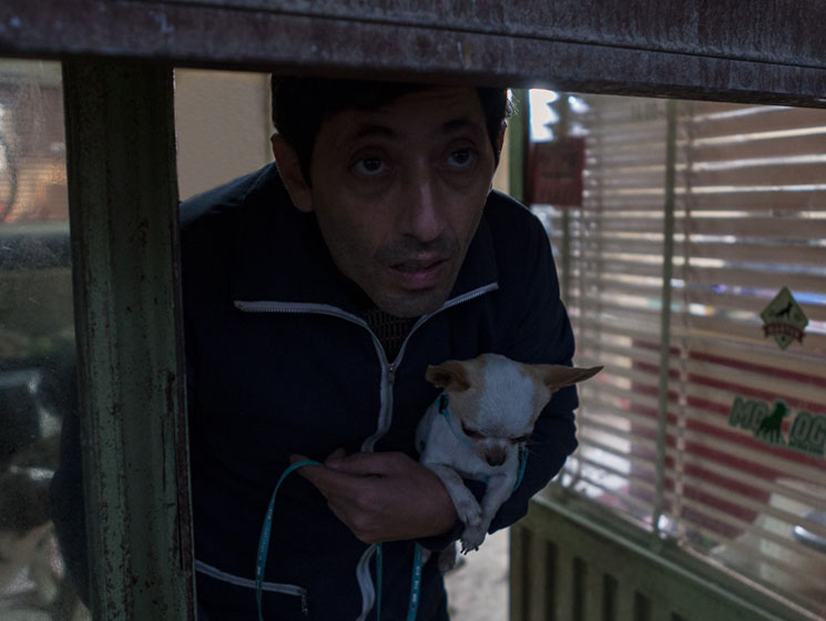 TIFF Review: 'Dogman' Is Too Dark to Find Redemption Directed by Matteo Garrone