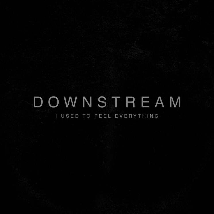 Downstream 'I Used to Feel Everything' (EP stream)