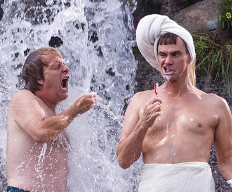 'Dumb and Dumber To,' 'The Theory of Everything' and 'Wolves' Lead Our Friday Film Review Roundup