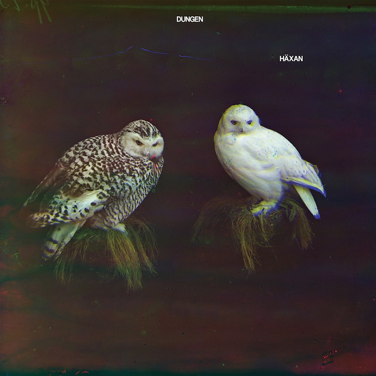 Dungen to Release Film Score for Vintage Animated Film