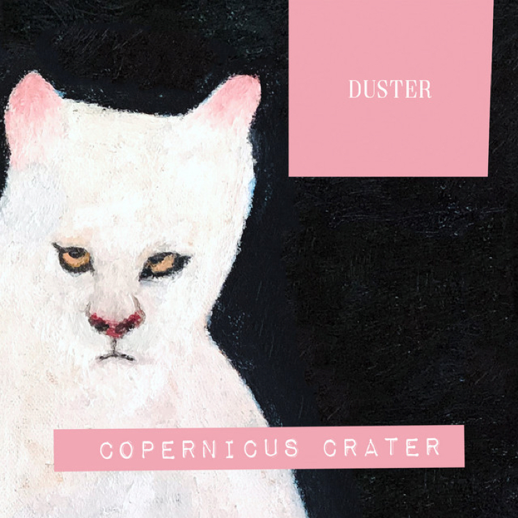 "Duster Share ""Copernicus Crater"""