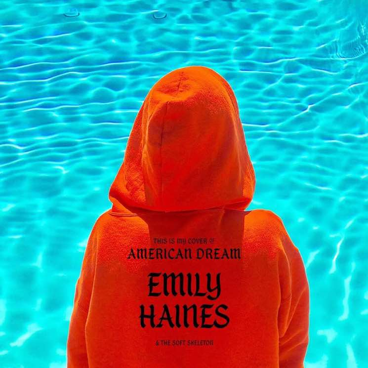 "​Hear Emily Haines Cover LCD Soundsystem's ""American Dream"""