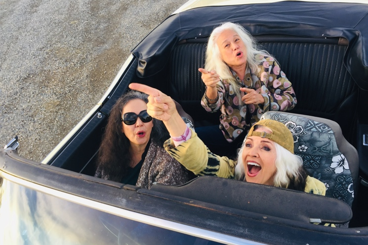 Hot Docs Review: 'Fanny: The Right to Rock' Celebrates the Past but Gets Stuck in the Present Directed by Bobbi Jo Hart