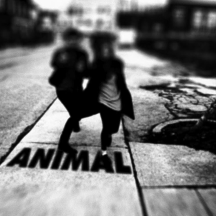 "Fast Romantics ""Animal"""