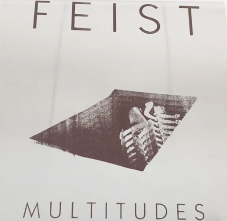 Feist to Debut New Music with 'MULTITUDES' Project