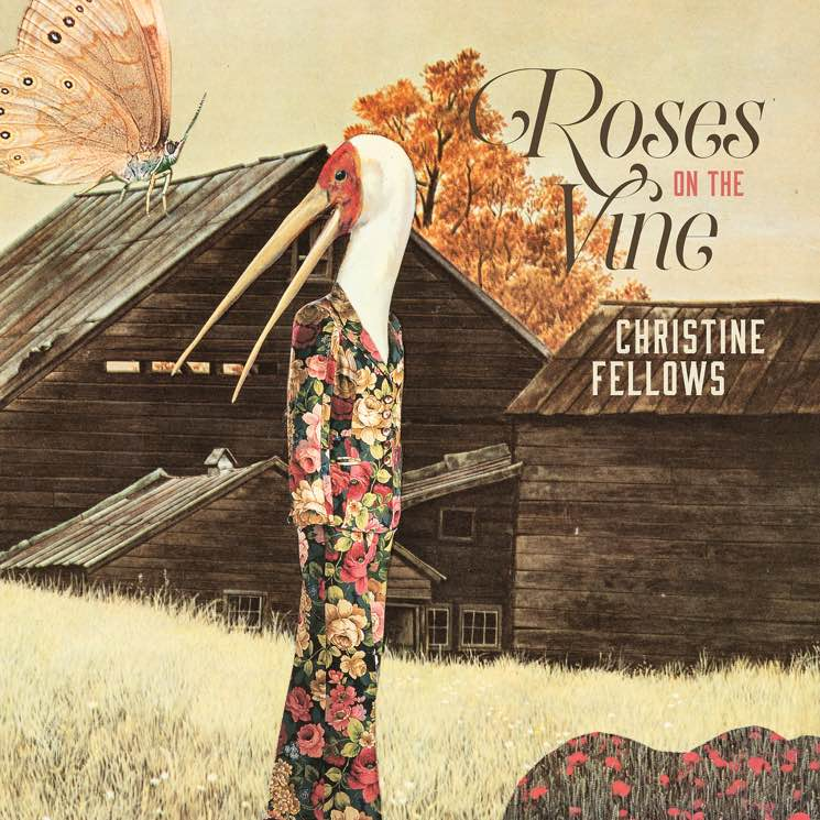 Christine Fellows Roses on the Vine