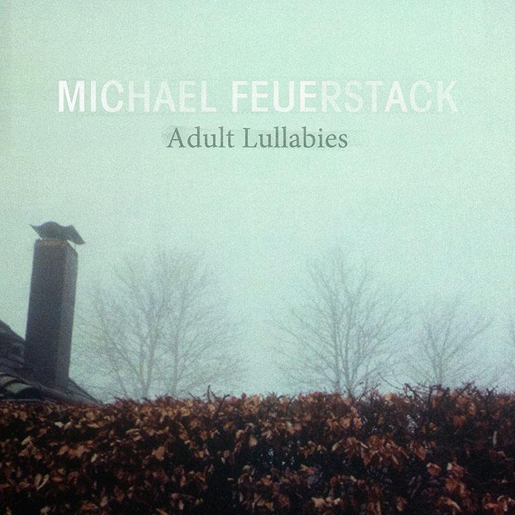 Michael Feuerstack Adult Lullabies