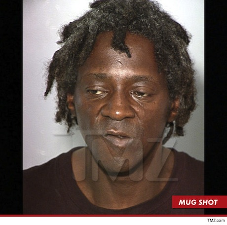 Flavor Flav Freed on Bail, Facing Six Years in Prison over Assault Charge