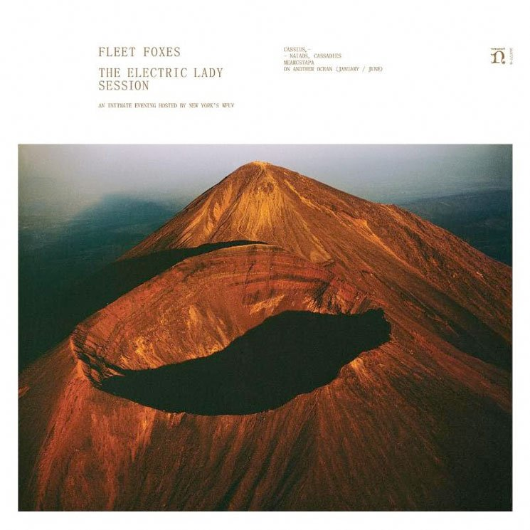 Fleet Foxes Announce New 10-inch for Record Store Day's Black Friday Event