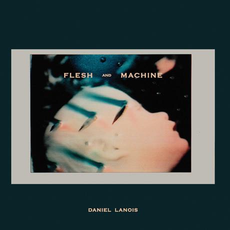 Daniel Lanois Flesh And Machine