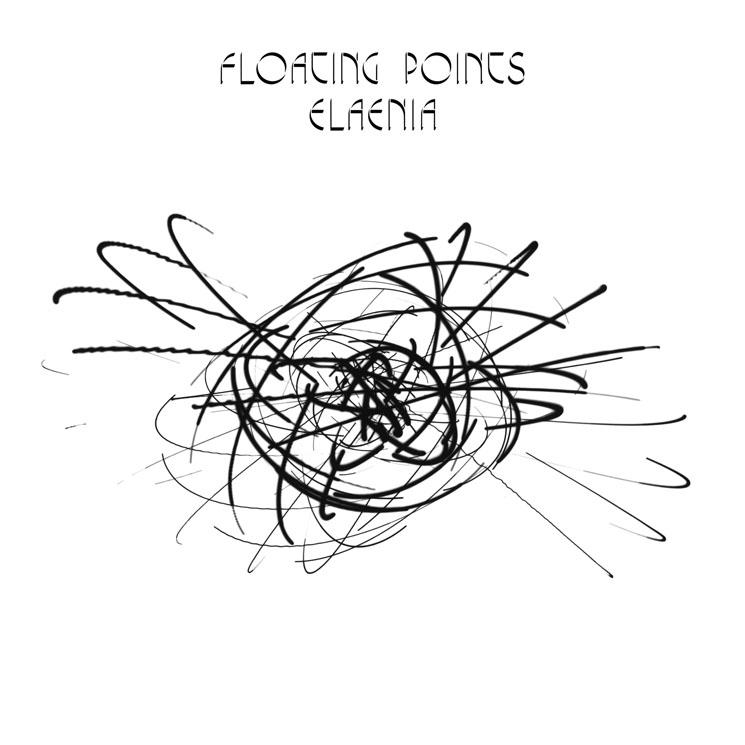 Floating Points Elaenia