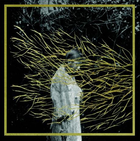 Forest Swords Announces 'Engravings' LP