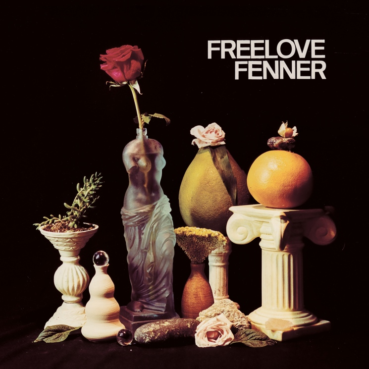 Hear Freelove Fenner's First Album Since 2013, 'The Punishment Zone'