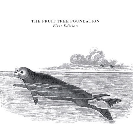 Members of Frightened Rabbit, Delgados, Twilight Sad Team Up as Fruit Tree Foundation