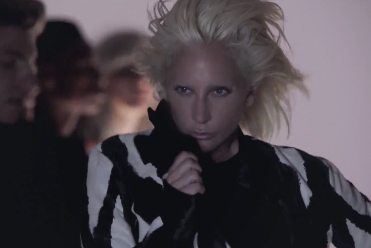 "Lady Gaga ""I Want Your Love"" (Chic cover) (video)"