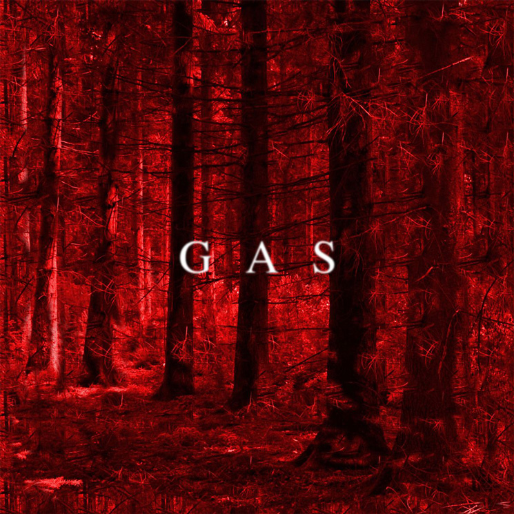 Wolfgang Voigt Shares New GAS Song 'Zeit'
