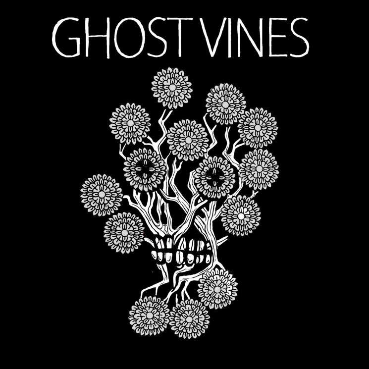 Ghost Vines Ghost Vines