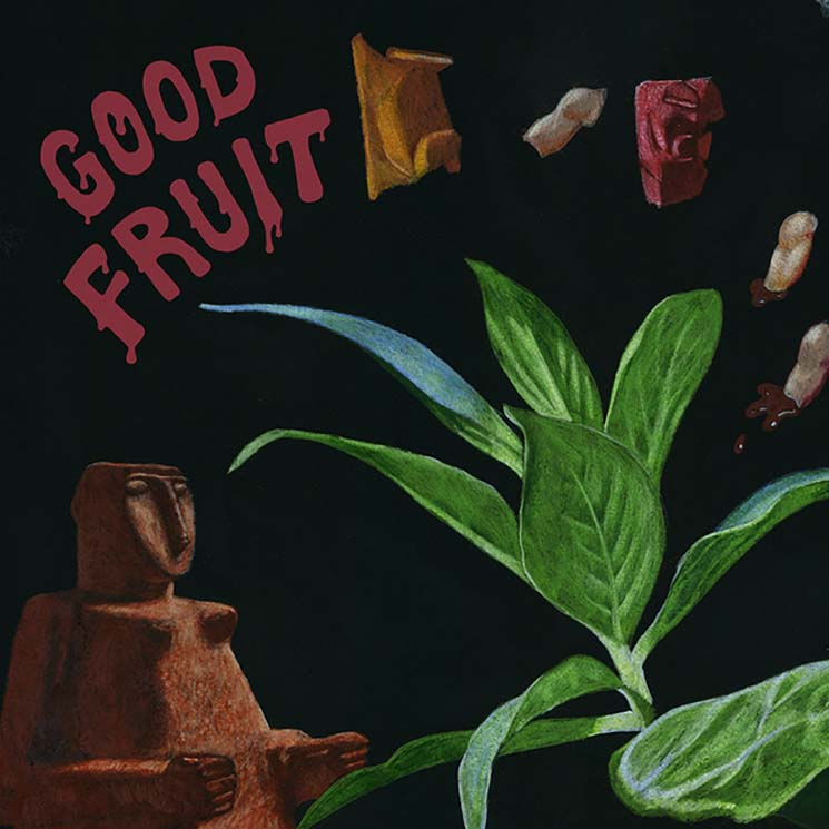 TEEN Good Fruit