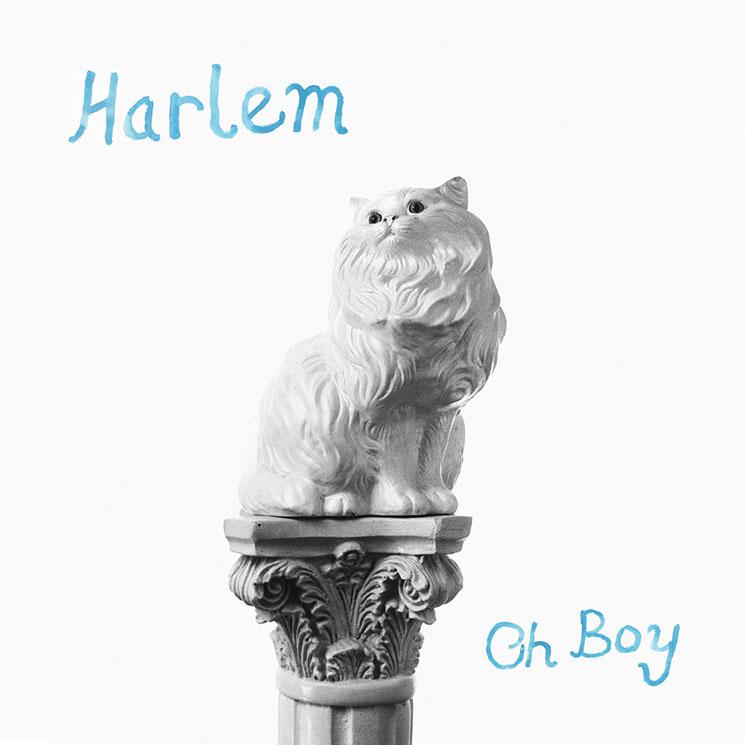 Harlem Oh Boy
