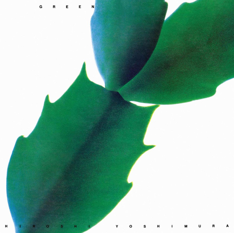 Hiroshi Yoshimura's Ambient Masterpiece 'GREEN' Gets Its First-Ever Reissue