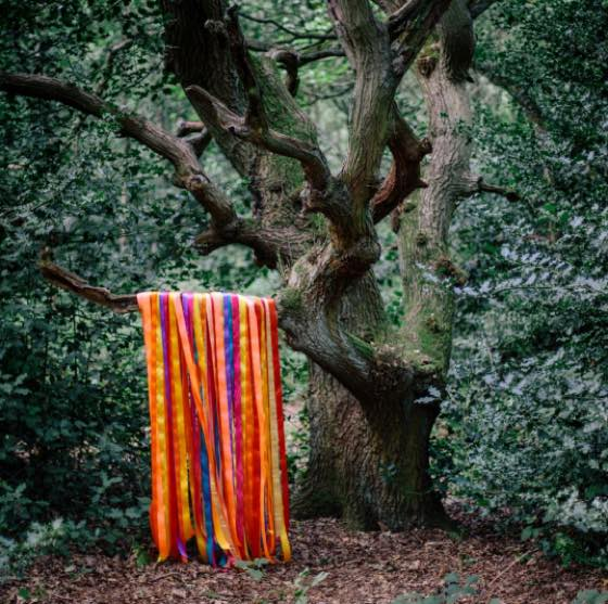 James Holden and the Animal Spirits The Animal Spirits
