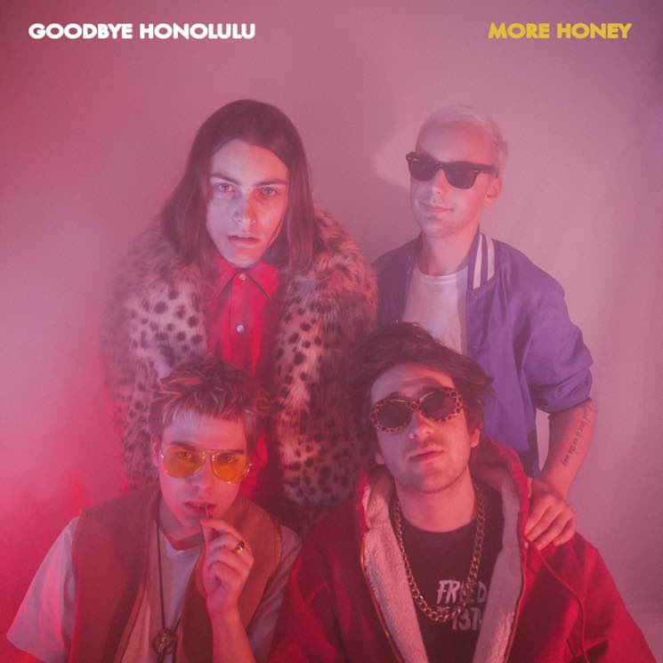 Stream Goodbye Honolulu's 'More Honey' EP